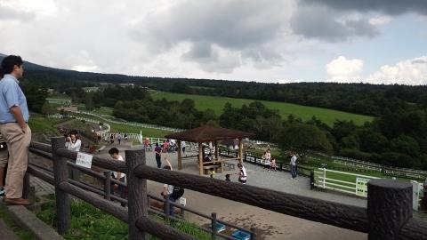 まきば公園内は相当広い箇所で牛が放牧されていました。ちょっと思ったより雲が多く寒いくらいでした。