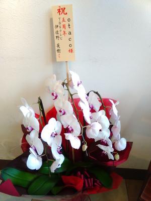 祝い花①_convert_20150903211947