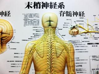 腕のしびれは首が原因?