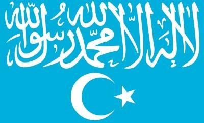 東トルキスタンイスラム運動の旗