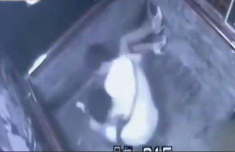 (実録映像)密室のエレベーター内で女子がレ●プされる一部始終・・・※ムービーあり