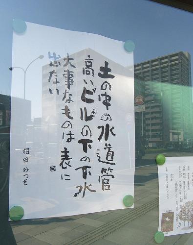 1604sakura1010.jpg