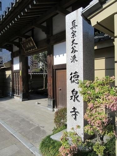 1604sakura1011.jpg