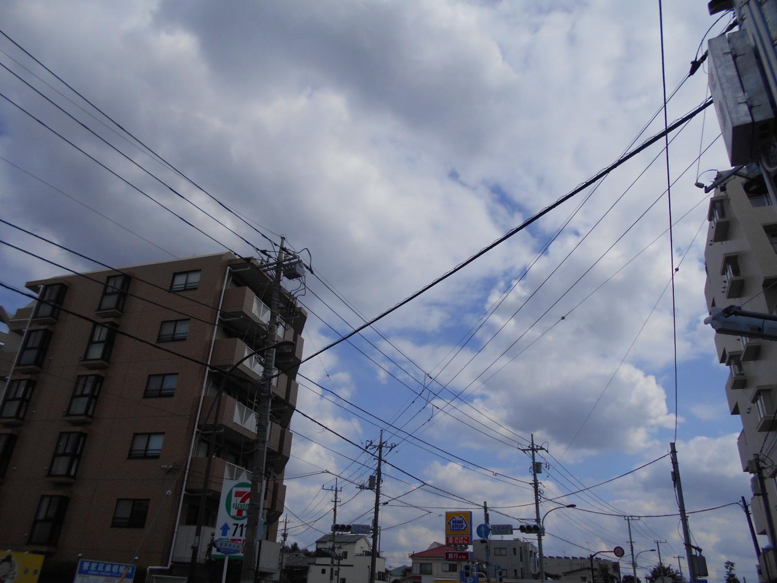 DSCN1247.jpg