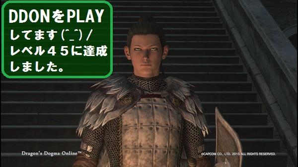 DDON ドラゴンズドグマオンライン dragonsdogma on-line プレイ日記 レベル45