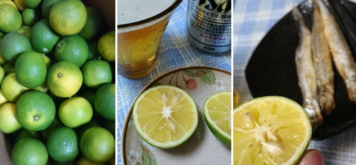 151012酢橘でビール