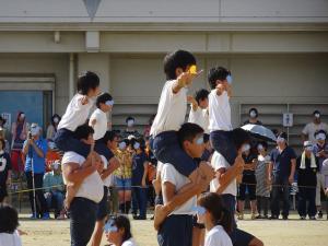 DSC09746繝壹う繝ウ繝・convert_20150926181801