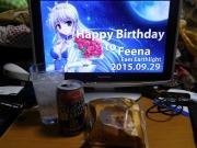 フィーナ姫生誕祭
