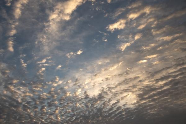 うろこ雲-4363