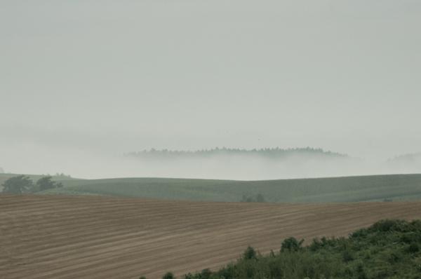 もやの丘景-9749