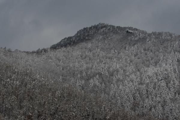 雪の日3-8383