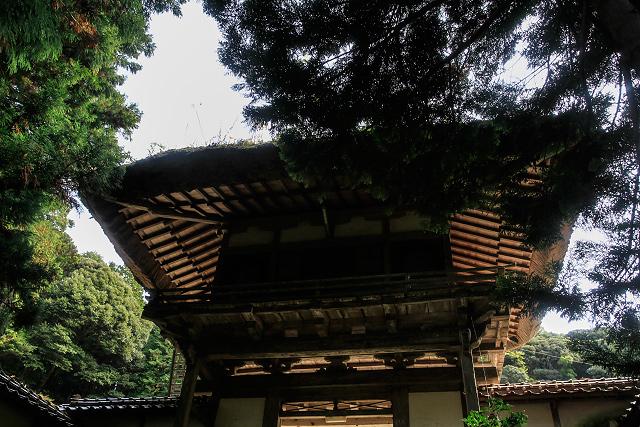 琴浦町 光徳寺