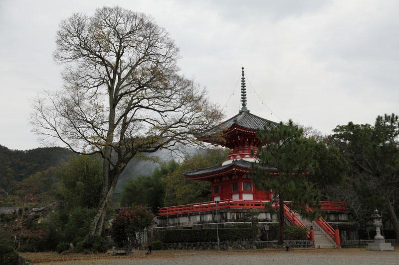 151128京都010