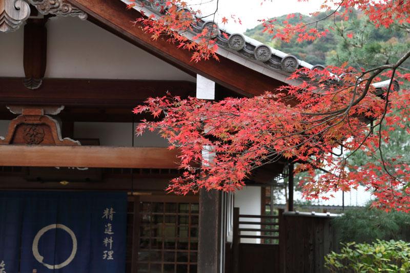 151130京都旅行09
