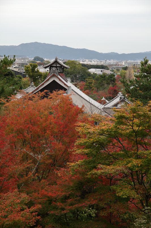 151130京都旅行10