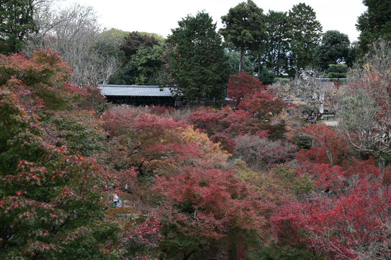 151201京都旅行03