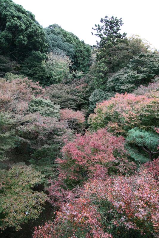 151201京都旅行04