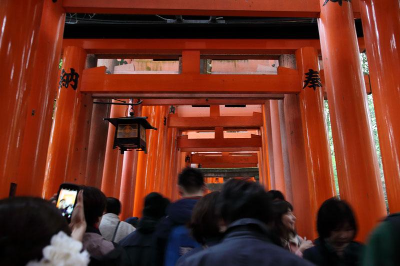 151206京都旅行10