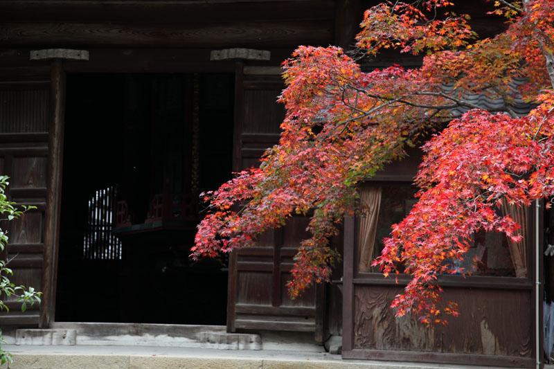 151201京都旅行10