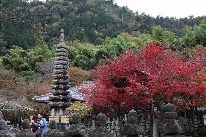 151202京都旅行01