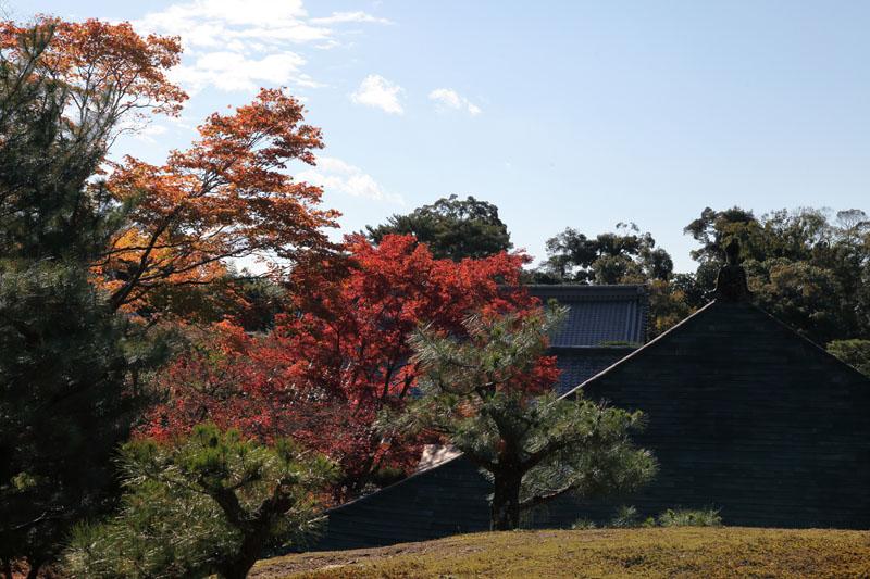 151202京都旅行05