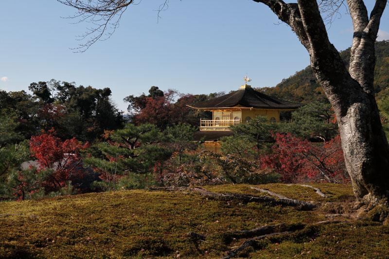 151207京都旅行12