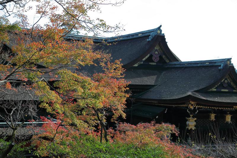 151202京都旅行08