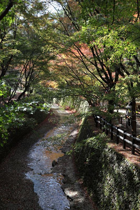151207京都旅行20