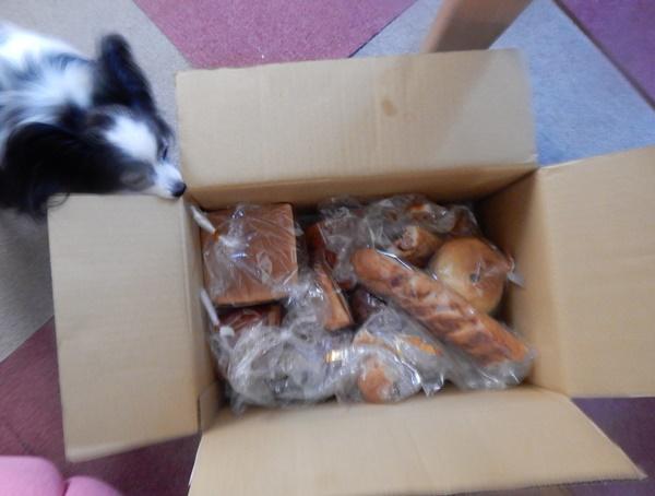 たくさんのパン!!!