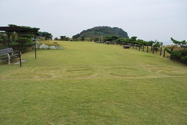芝生に「ようこそ」の文字