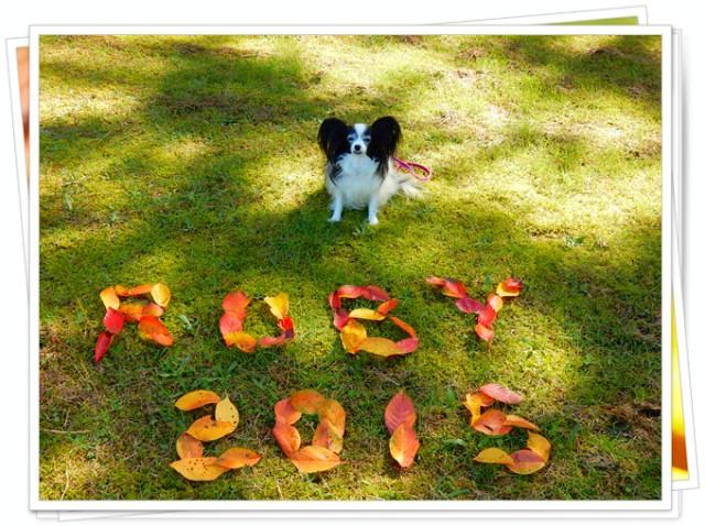 葉っぱ文字「RUBY2015」