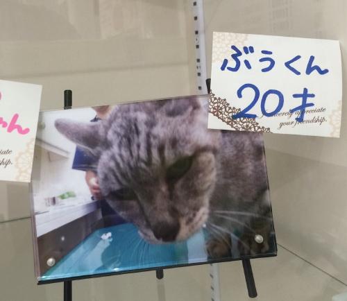 boo_20151020.jpg