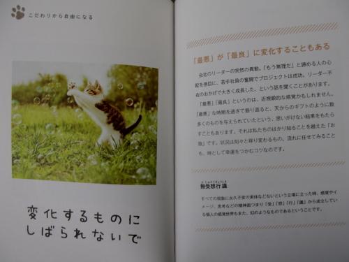 hannyashinkyou_201510050632.jpg