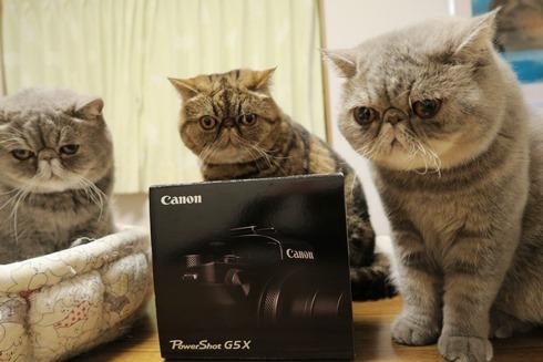 1)カメラよりおやつれつ
