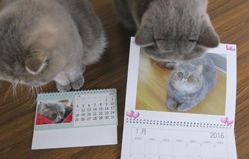 7)カレンダー1月