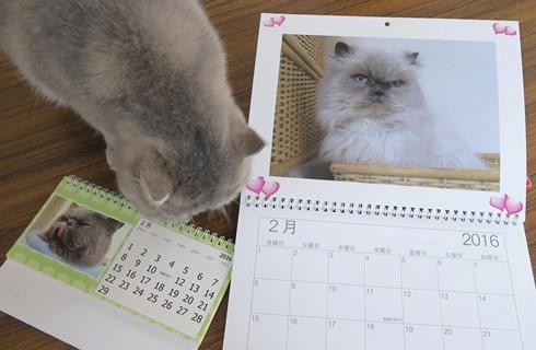 8)カレンダー2月