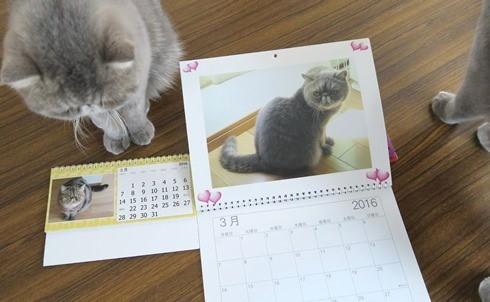 9)カレンダー3月