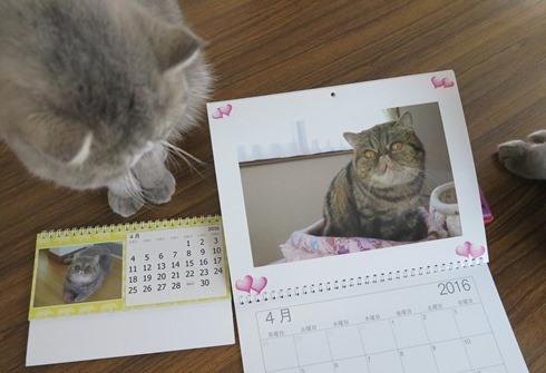10)カレンダー4月