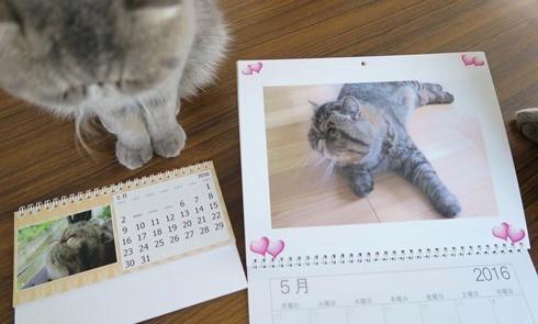 11)カレンダー5月