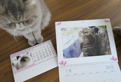 13)カレンダー7月-2
