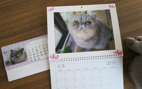 14)カレンダー8月