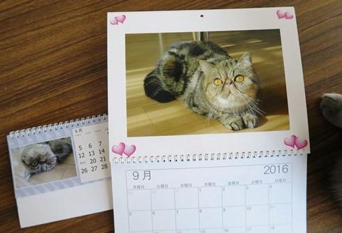 15)カレンダー9月