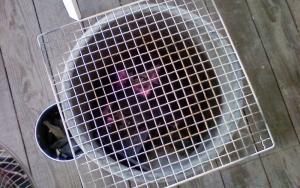 火鉢 (1)