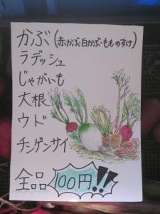 15-11宙結び2 (44)