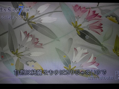 P1120796.jpg