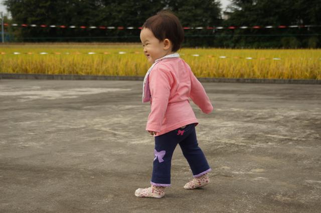 娘田んぼの秋、わきで歩く
