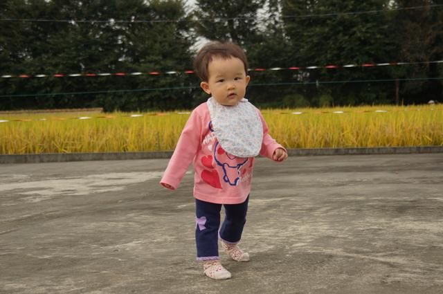 娘歩くたんぼで 秋