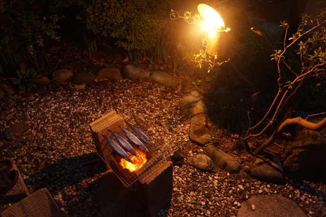 秋刀魚を焼く。カーバイドの明かりで