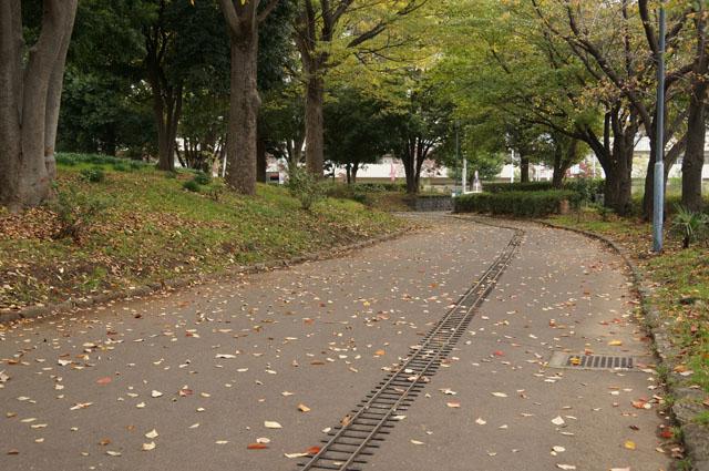 落ち葉の舞う軌道敷