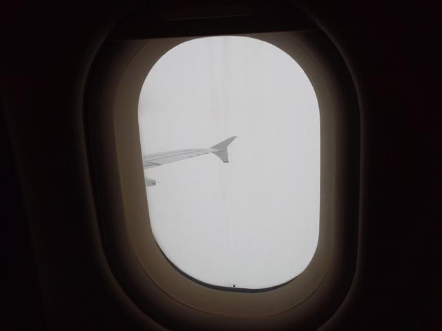 帰りの飛行機はA320